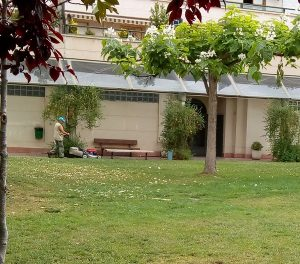 Mantenimiento de jardines en la provincia de Zaragoza.